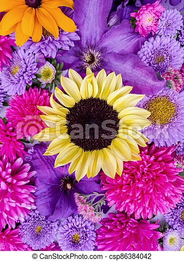 Beautiful collection of sunflower flowers, asters and clematis - csp86384042