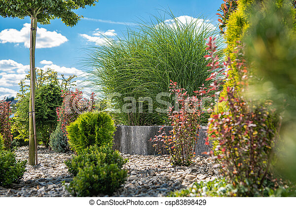 Beautiful Colorful Backyard Garden with Many Different Plants and Trees - csp83898429