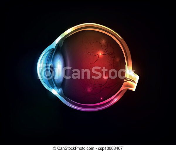 Beautiful colorful human eye - csp18083467