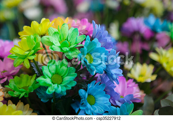 Beautiful colourful flowers - csp35227912