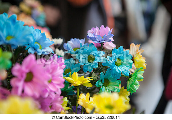 Beautiful colourful flowers - csp35228014