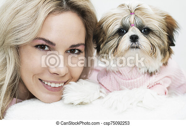 beautiful cute girl holding a well groomed shih tzu puppy in a pink sweater