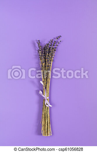 Beautiful dried lavender bouquet on violet surface - csp61056828