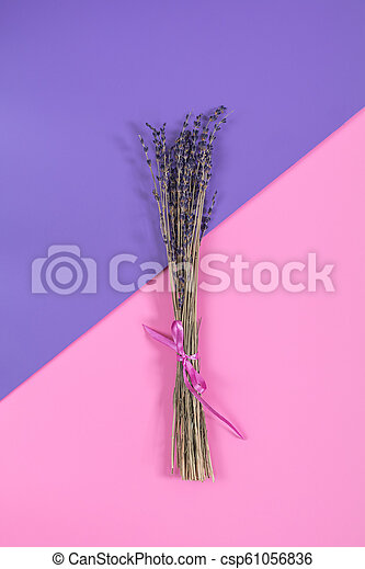 Beautiful dried lavender bouquet on violet pink surface. - csp61056836