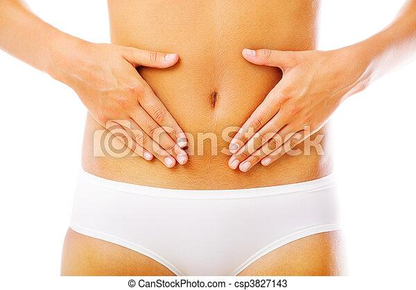 Beautiful female body - csp3827143