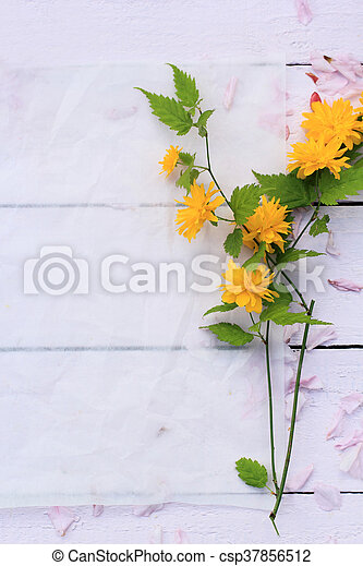 Beautiful floral background with Spring flowers - csp37856512