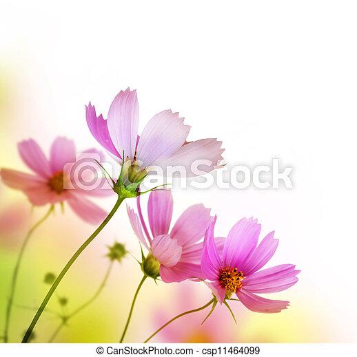 Beautiful Floral Border. Flower design - csp11464099