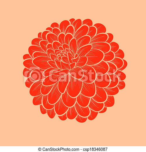 Beautiful Flower Dahlia Drawn In Graphical Style Contours And Lines Isolated On White Background Vector