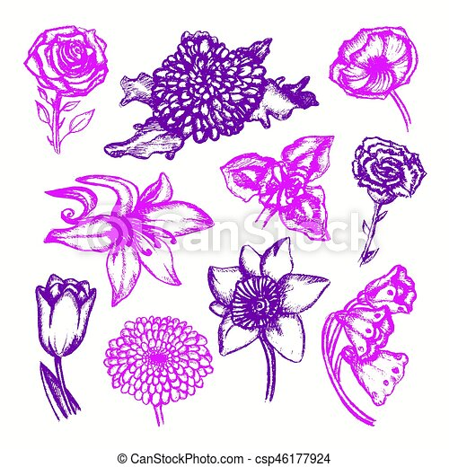 Beautiful Flowers Color Hand Drawn Illustrative Composition