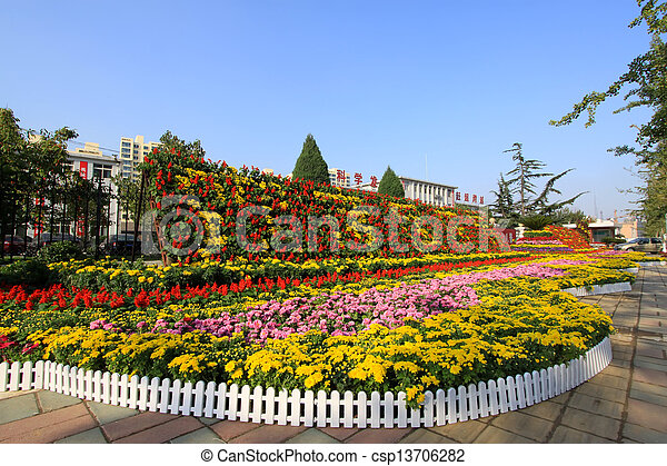 beautiful flowers in the park - csp13706282