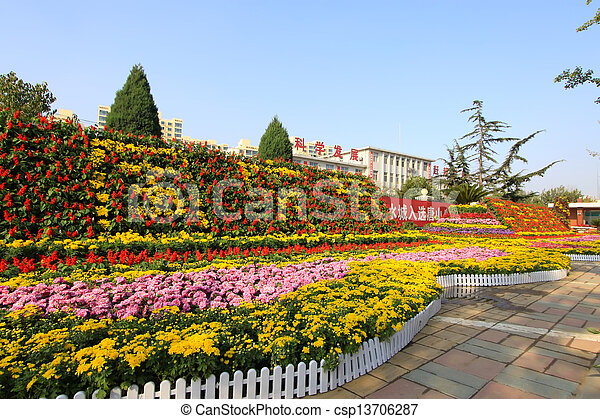 beautiful flowers in the park - csp13706287