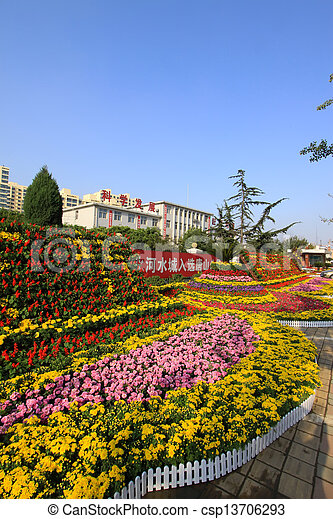 beautiful flowers in the park - csp13706293