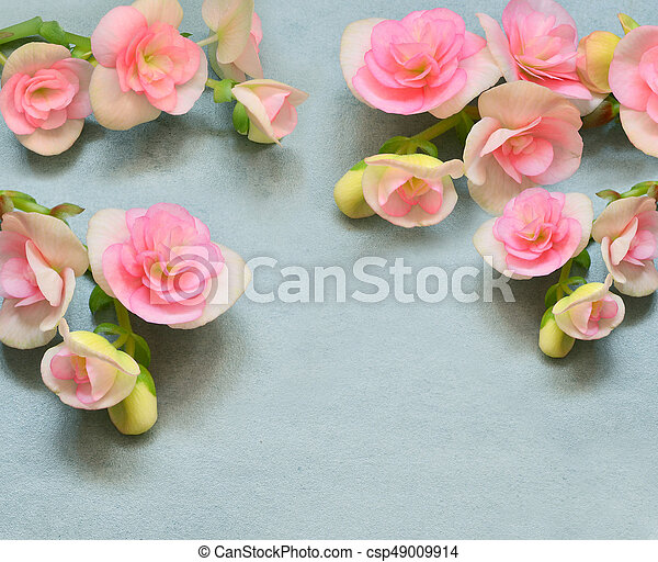 Beautiful flowers on a blue background - csp49009914