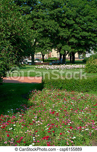Beautiful flowers - csp6155889