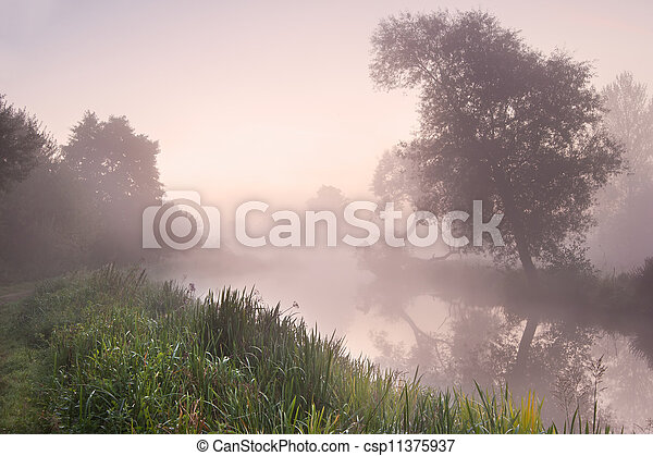 Beautiful foggy sunrise landscape over river with trees and sunb - csp11375937