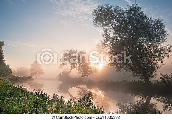 Beautiful foggy sunrise landscape over river with trees and sunb - csp11635332