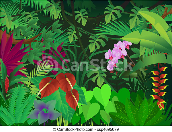 beautiful forest background - csp4695079