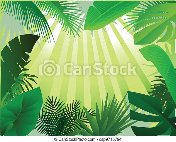 Illustration Of Beautiful Forest Background
