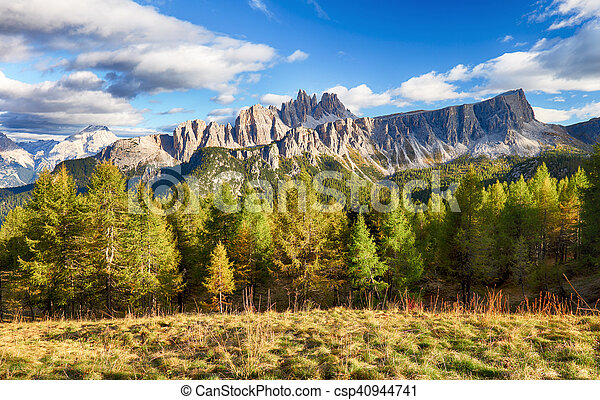 Beautiful forest mountain landscape in Alps - csp40944741