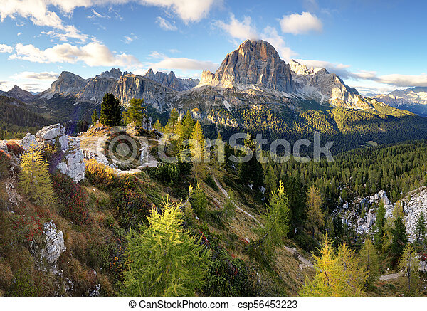 Beautiful forest mountain landscape in Alps - csp56453223