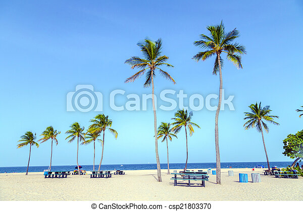 beautiful Fort Lauderdale beach - csp21803370