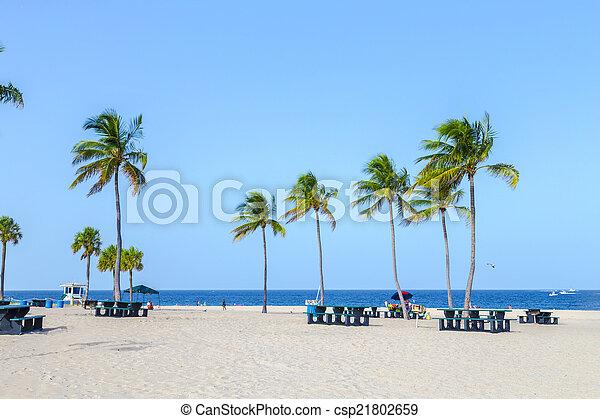 beautiful Fort Lauderdale beach - csp21802659