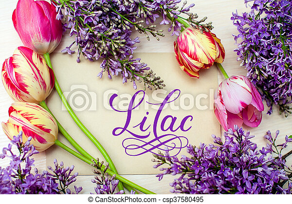 Beautiful frame of lilacs and tulips for greeting card with word lilac - csp37580495