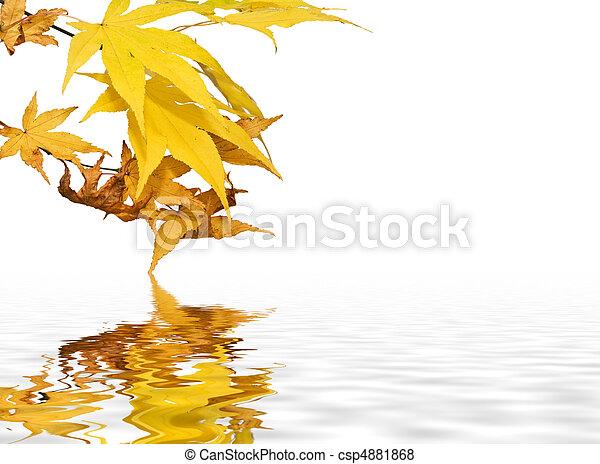 Beautiful fresh bright Autumn Fall Background image - csp4881868