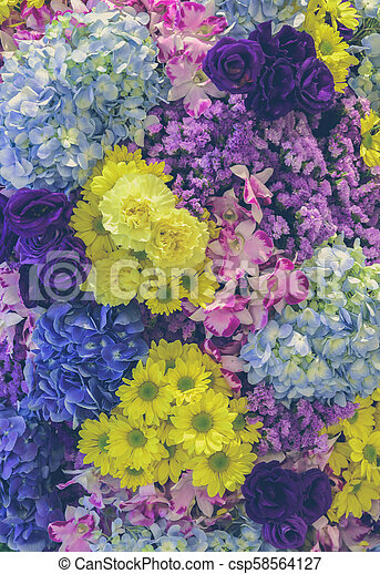 Beautiful Fresh Different Types Of Colorful Flowers Decorated Garden Wall Soft Filtered Effect