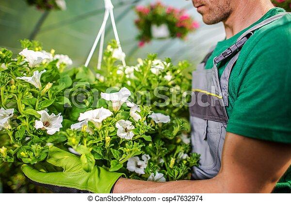 Beautiful Garden Flowers - csp47632974