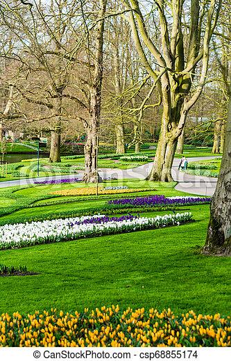 Beautiful garden in spring - csp68855174