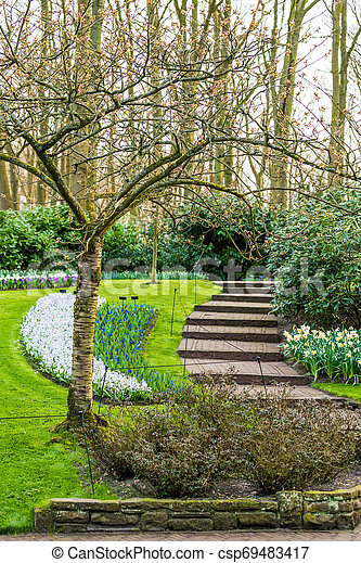 Beautiful garden in spring - csp69483417