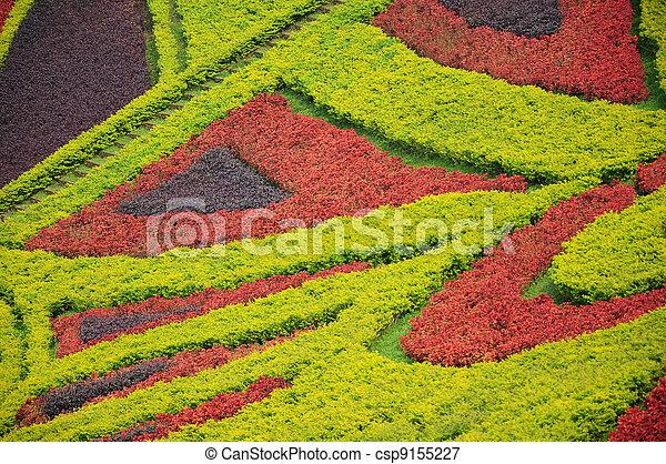 Beautiful garden in spring - csp9155227