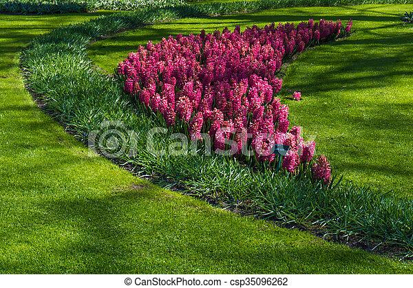 Beautiful garden in spring. Springtime - csp35096262