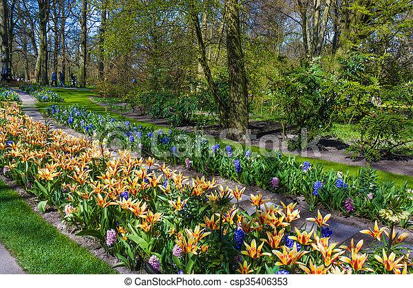 Beautiful garden in spring. Springtime - csp35406353