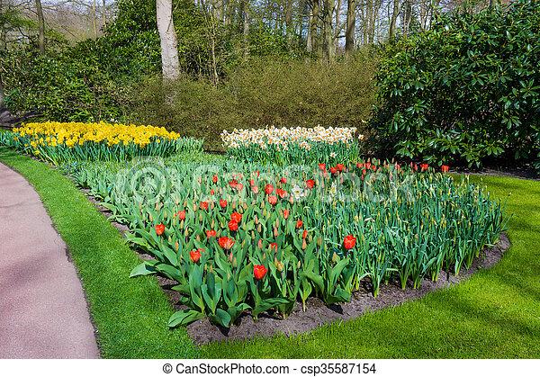 Beautiful garden in spring. Springtime - csp35587154