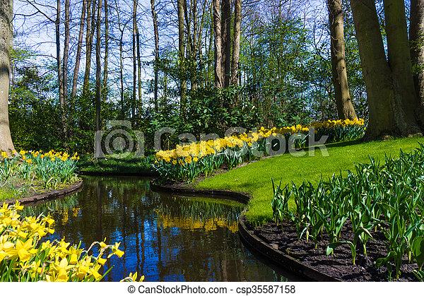 Beautiful garden in spring. Springtime - csp35587158
