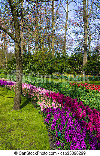 Beautiful garden in spring. Springtime - csp35096299
