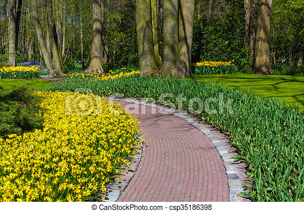 Beautiful garden in spring. Springtime - csp35186398