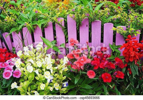 Beautiful garden in spring - csp45693666