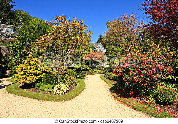 Beautiful garden in Spring time - csp6467309