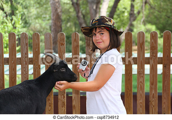 beautiful girl playing with a goat - csp8734912