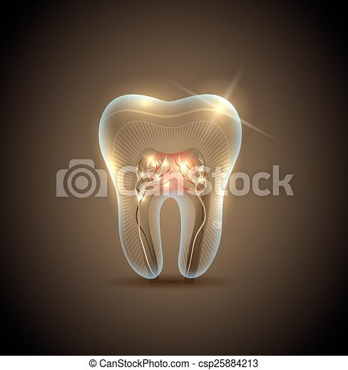 Beautiful golden transparent tooth with roots illustration - csp25884213