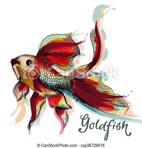Goldfish line drawing - photo#35