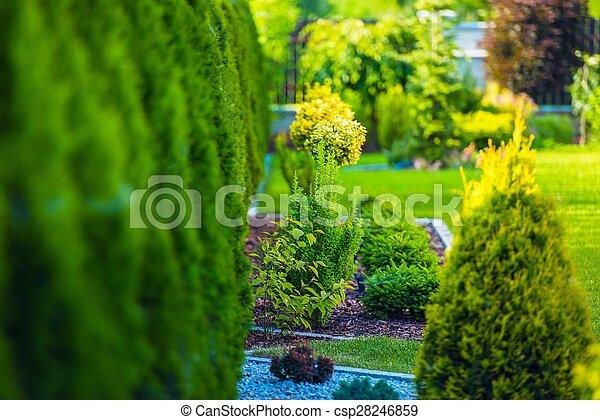Beautiful Green Garden - csp28246859