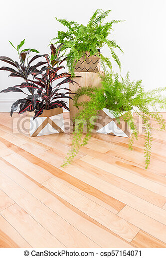 Beautiful green plants in a room with wooden floor - csp57154071