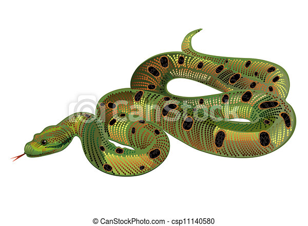 Beautiful green snake realistic - csp11140580