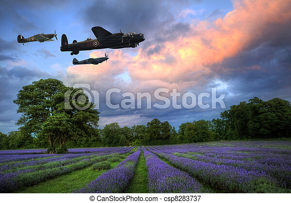 Beautiful image of stunning sunset with atmospheric clouds and sky over vibrant ripe lavender fields in English countryside landscape - csp8283737