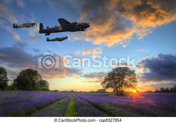 Beautiful image of stunning sunset with atmospheric clouds and sky over vibrant ripe lavender fields in English countryside landscape - csp8327854
