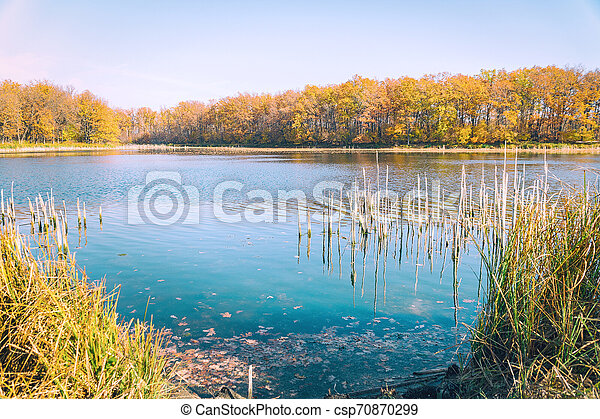 Beautiful lake in the autumn forest against blue sky - csp70870299